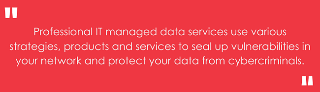 Professional IT managed data services use various strategies, products and services to seal up vulnerabilities in your network and protect your data from cybercriminals.